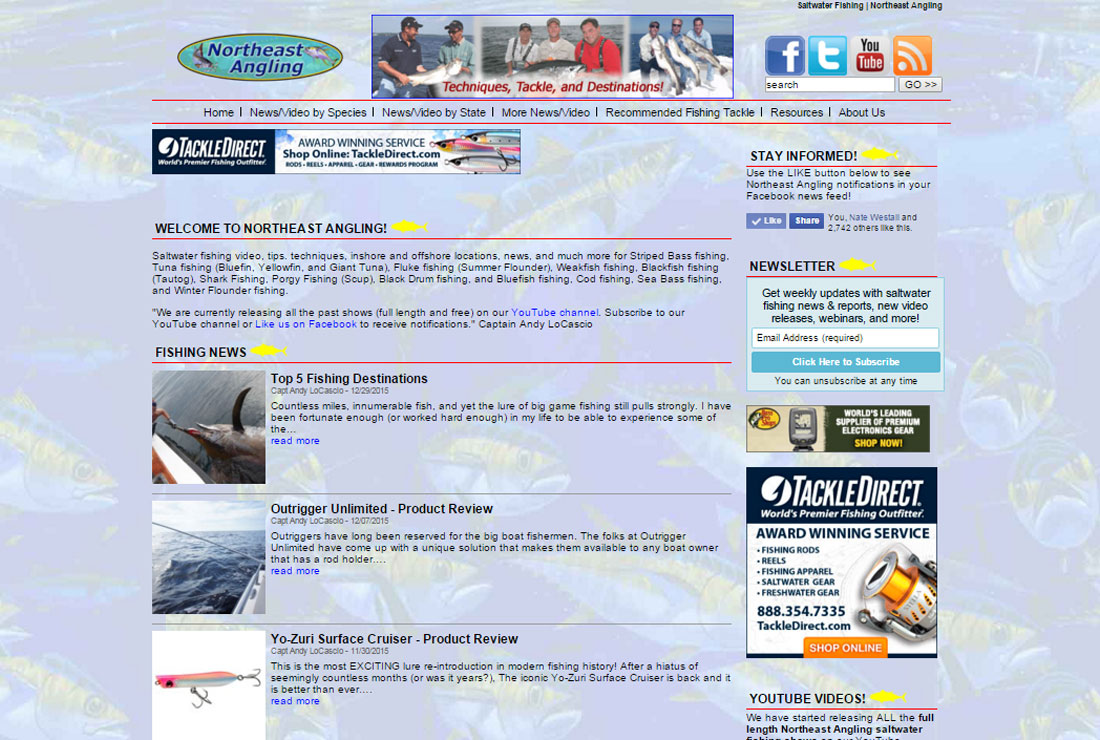 Northeast Angling | Best SEO Services New York